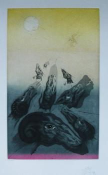Joan PONÇ - Quichotte 5, Signed Etching and aquatint 2