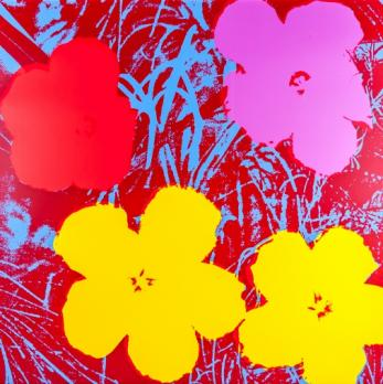 Andy WARHOL (d'après) - Flowers, Sérigraphie Sunday B Morning 2