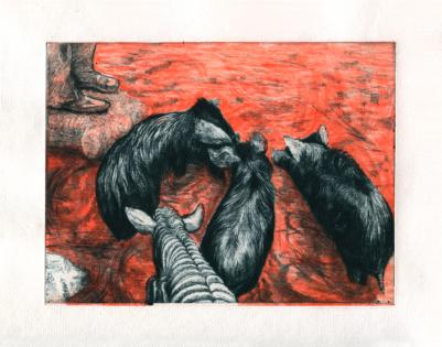 Tereza LOCHMANN - Pigs drinking (red version), Gravure originale signée 2
